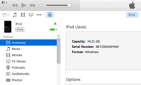 summary tab in itunes for ipod classic