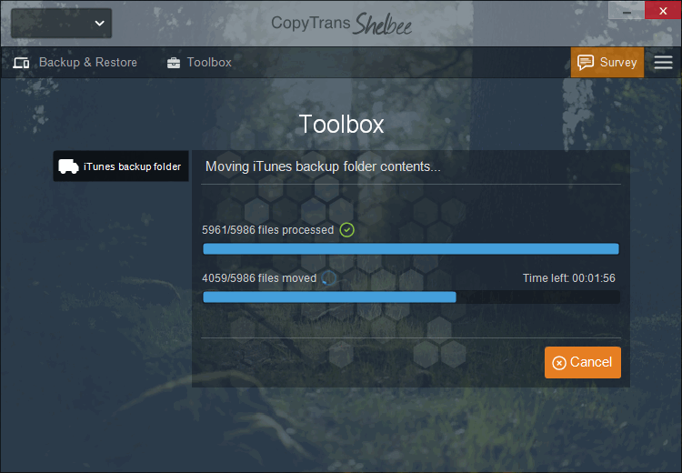 copytrans shelbee toolbox screen