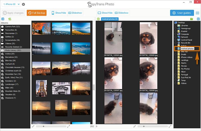 pc photo folder selected in main copytrans photo window