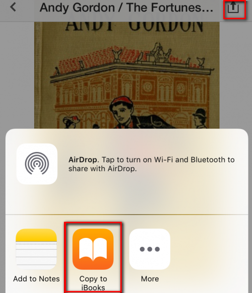 Add your ebooks to iBooks