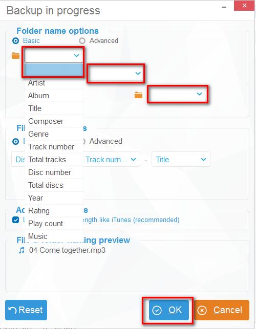 Customize folders in CopyTrans