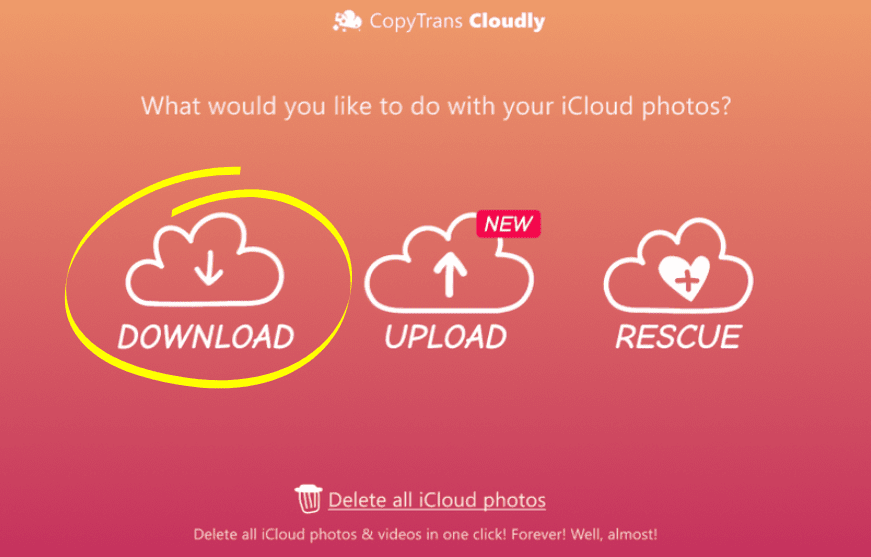 Download files from iCloud