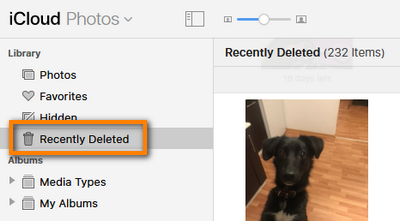 Recently deleted folder in iCloud