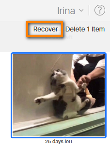Recover recently deleted photo from iCloud