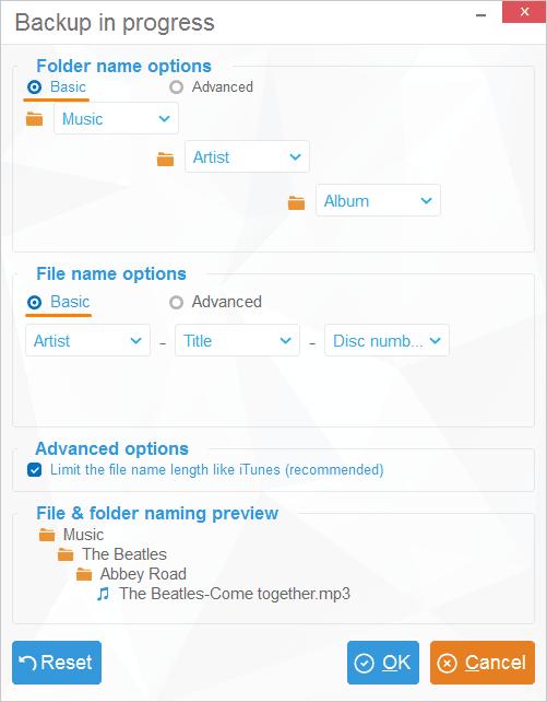 Basic customization window in CopyTrans
