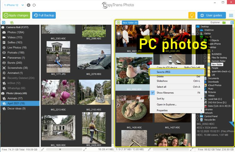 Convert HEIC to JPEG in CopyTrans Photo