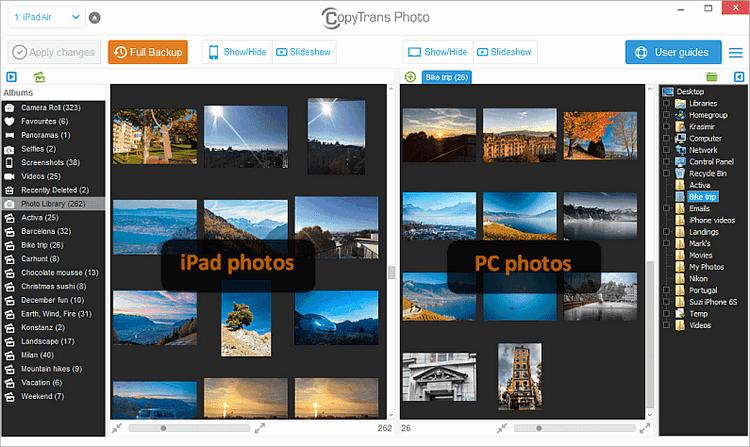 iPad photos displayed in CopyTrans Photo