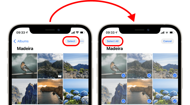 Select and Select All buttons in an iPhone album