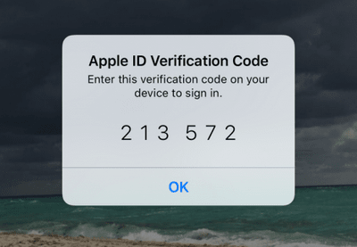 Apple ID verification screen in CopyTrans CLoudly