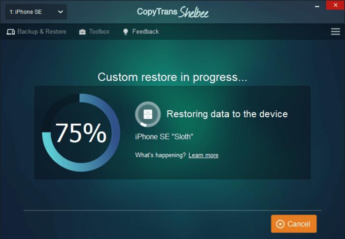 shelbee custom restore iphone apps