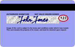 safari does not collect csc card number