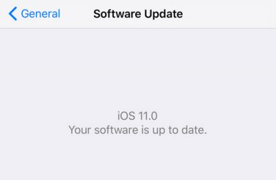 Check for iPhone software update