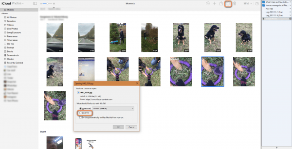 Click on the download button to backup you heic photos from iCloud Photo Library