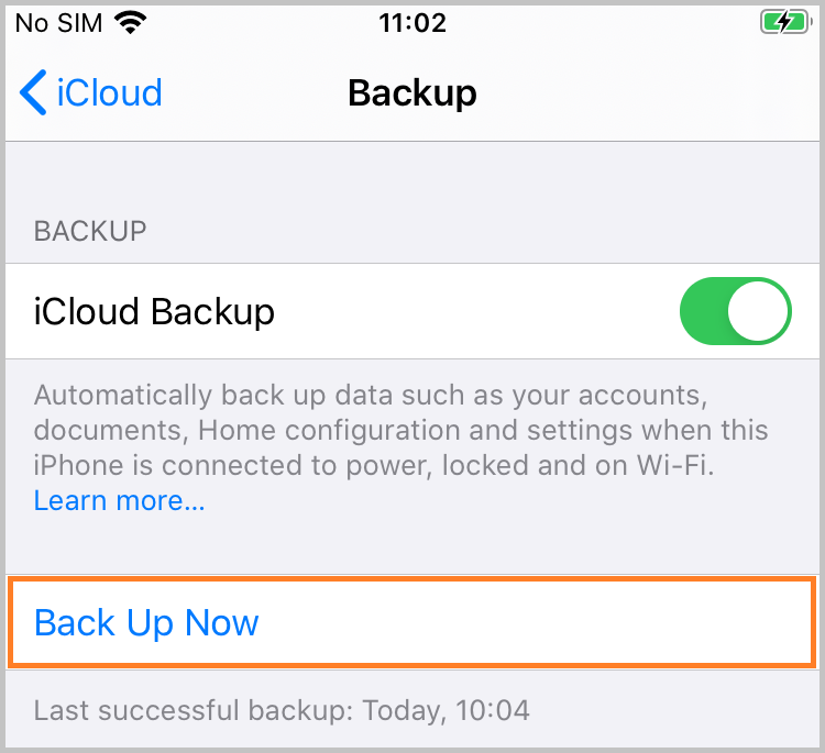 Choose to Back Up Now with iCloud
