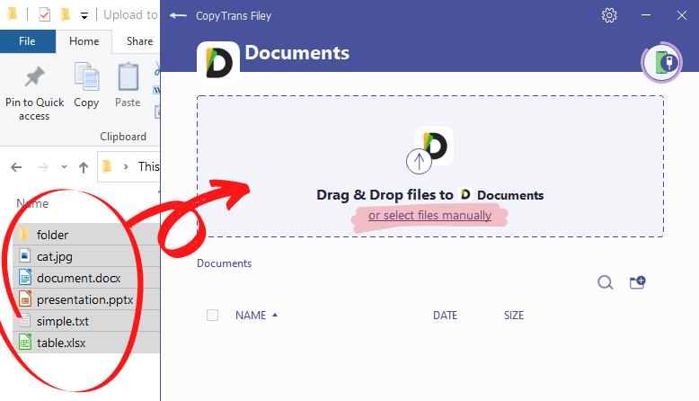 CopyTrans Filey files selection