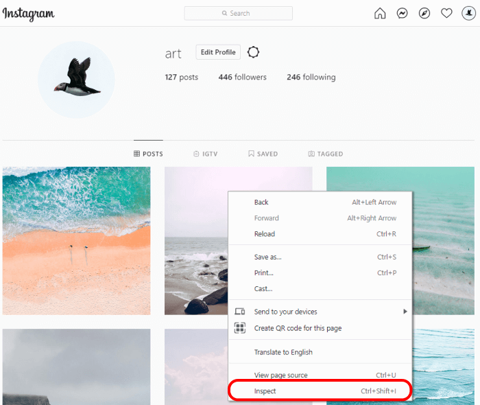 Instagram in web browser inspector winodow