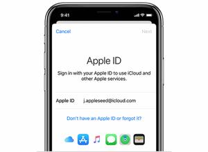 apple id interface